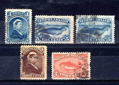 NEWFOUNDLAND QV GOOD TO FINE USED x 5 STAMPS NOT CAT OR CHECKED BY ME