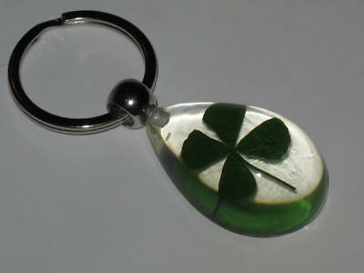 Real 4 Leaf Clover Shamrock Keychain Witch Estate GOOD LUCK O THE IRISH FORTUNE