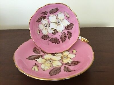 Beautiful Pink Double Paragon With Huge Ivory Roses Tea Cup And Saucer