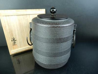 J1978: Japanese Iron TEAKETTLE Teapot Chagama, Kiyomitsu made w/signed box