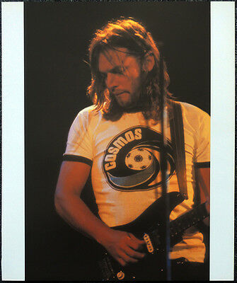Pink Floyd Poster Page 1977 Wembley Empire Pool David Gilmour .r53