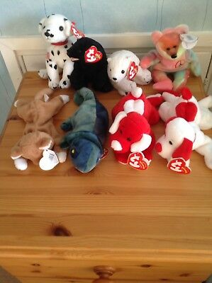 8 Rare Retired Ty Beanie Babies With Tags