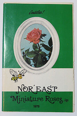 Rose Flower Catalog Nor East Miniature Roses Inc Massachusetts 1978