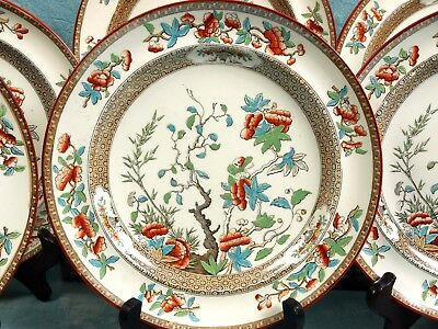 Antique 1860 COPELAND Indian India Tree Green Rust Luncheon set of 8 Victorian