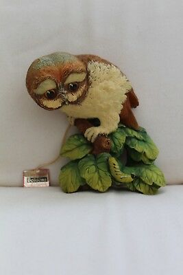 Rare Vintage Bossons 1965 Owlet Wall Plaque - Boxed and Mint