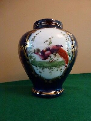 """Royal Worcester"" Fantastic Bird Pot"
