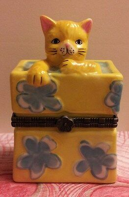 ORANGE TABBY CAT IN GIFT BOX TRINKET BOX with Surprise Inside!!!