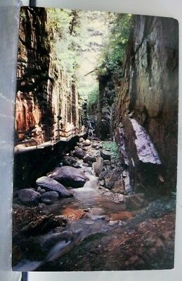 New Hampshire NH Flume Postcard Old Vintage Card View Standard Souvenir Postal