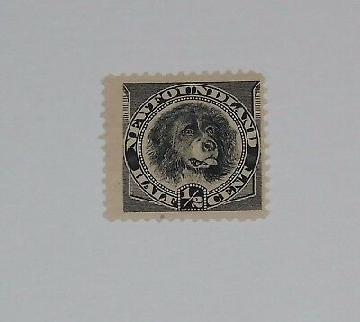 Stamp Pickers Newfoundland 1894 Classic Dog 1/2c Scott #58 MH OG $20