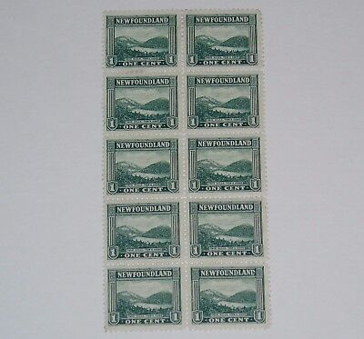 Stamp Pickers Newfoundland 1923-24 Twin Hills Tor's Cove 10-Block Scott #131 $25