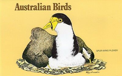 Australia Presentation Pack Birds