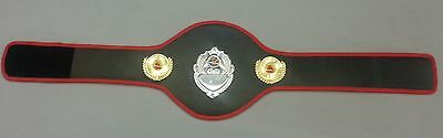 Childrens Boxing Champion Belts