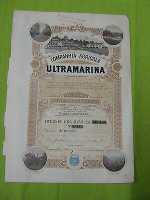 Agricultural Company Overseas - one share certified 1919