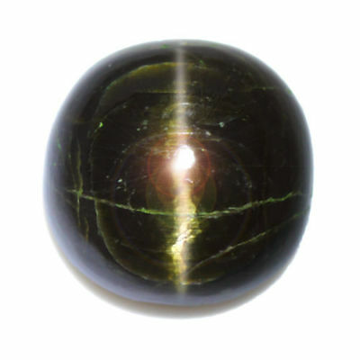 13.72cts_LIMITED EDITION COLLECTOR GEM_100% NATURAL UNHEATED ENSTATITE CAT'S EYE