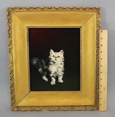 Small Antique Artist Signed Kitten Cat American Oil Painting, No Reserve!