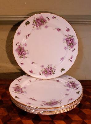 "Set of 6 Victorian Violets 10 3/4""Dinner Plates Hammersley Embossed Scroll China"