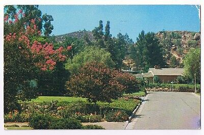 Riverside California Mount Rubidoux From The East Postcard