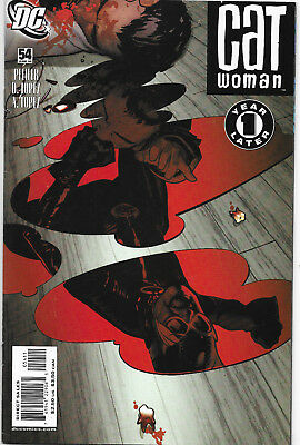 Catwoman (Vol.3) #54 DC Comics Adam Hughes Cover NM-