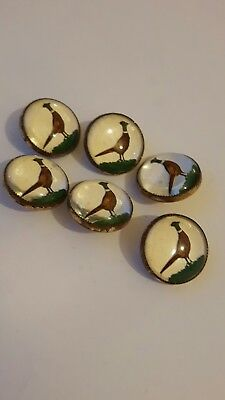"""A SET OF 6 EARLY 20th C LITHOGRAPH WAISTCOAT BUTTONS """"PHEASANTS"""" GILT & GLASS"""