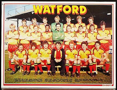 Football Team Picture Watford Shoot