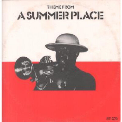 "TAN TAN Theme From A Summer Place 12"" VINYL UK Rough Trade 1981 2 Track"