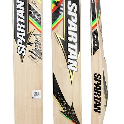 Spartan CG Boss Force Plus Grade 4 English Willow Cricket Bat, Full Size SH