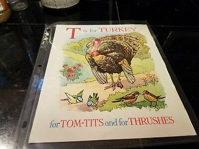 T for Turkey Cecily Steed illustration from British Wonder ABC Book