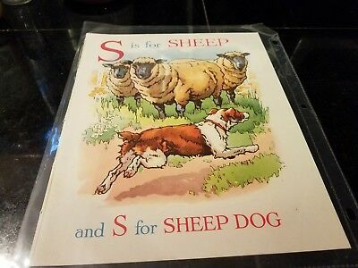 S for Sheep Cecily Steed illustration from British Wonder ABC Book