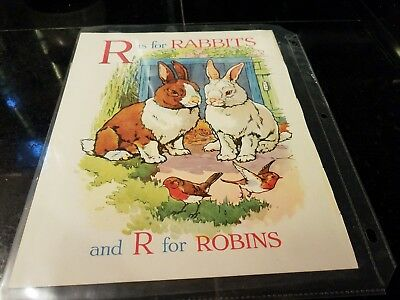 R for Rabbits Cecily Steed illustration from British Wonder ABC Book