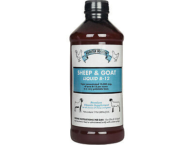 Rooster Booster Sheep & Goat Liquid B-12 16 oz