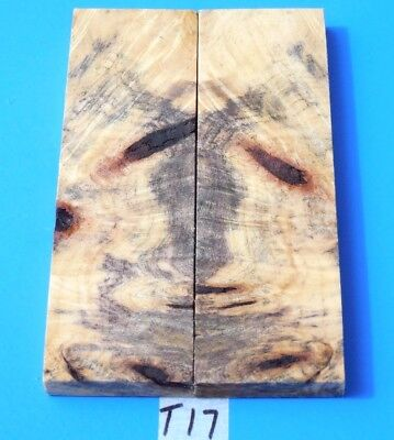 Colorful Buckeye Burl Knife Blank Handle Scales~Exotic Lumber//exotic Wood