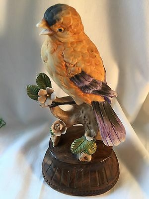 £ Vintage Robin Bird On Branch Figurine Porcelain Bisque Music Box