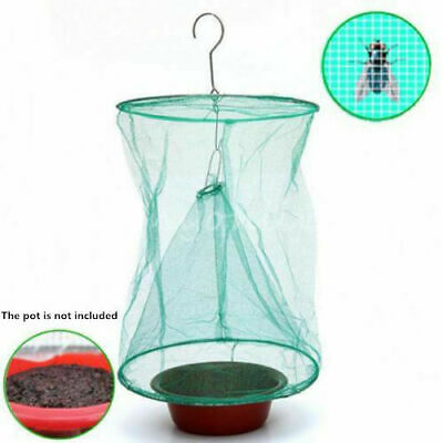 Drosophila Green Fly Bug Insect Net Flytrap Pest Catcher Cage Killer Trap Tools