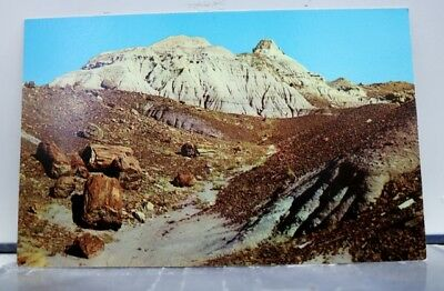 Arizona AZ Petrified Forest National Park Blue Mesa Postcard Old Vintage Card PC