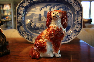 Fine Quality Staffordshire Spaniel Dog with Separately Moulded Leg C 1860