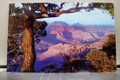 Arizona AZ Grand Canyon Sunset Hopi Point Postcard Old Vintage Card View Post PC