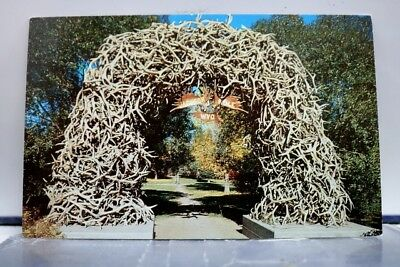 Wyoming WY Elk Horn Arch Jackson Postcard Old Vintage Card View Standard Post PC