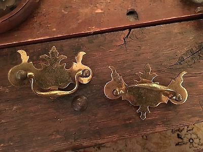 Antique Chippendale Brass Drawer Pulls~ 2