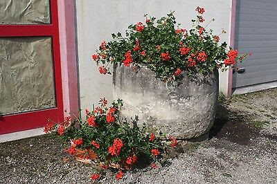 GRANDE PLANTER DECORATION OUTDOOR STONE SANDSTONE ITALY PERIOD '900 (D 95 cm)