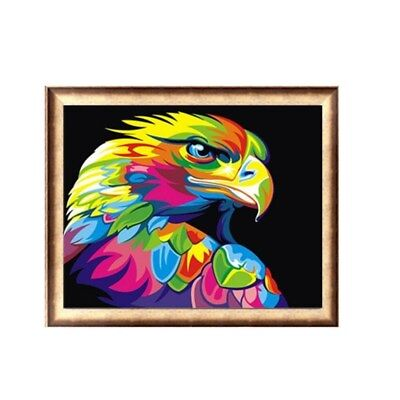 AU Framed Paint By Number Kit Multi-colored Eagle Animals Painting Home 50x40cm