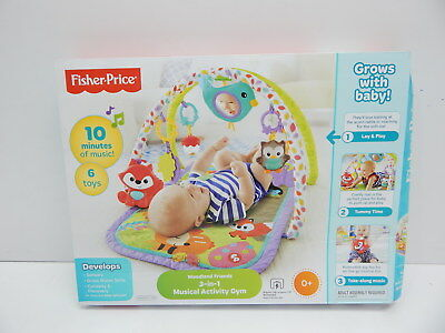 Fisher-Price CDN47 3-in-1 Musical Activity Gym BOX DAMAGE