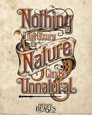 Mini Poster Fantastic Beasts Unnatural 40 x 50 cm