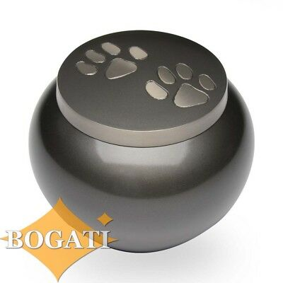 Double Paw Print Brass Pet Cremation Urn - MEDIUM - 2nd Quality - Free Shipping
