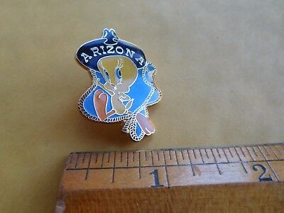 Tweety Bird Arizona Rodeo Warner Bros Pin