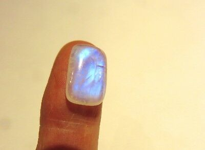 Mondstein blau- Rainbow Moonstone Cabochon 16,3x10 mm 8.5 ct. U19346