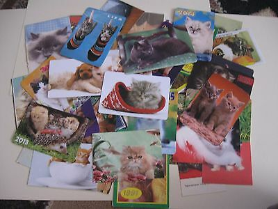 42 cat pocket calendars different years & countries lot C