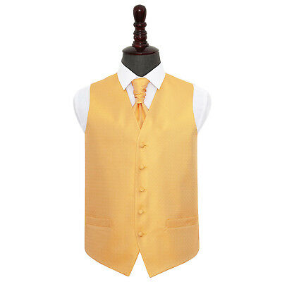 DQT Greek Key Patterned Marigold Yellow Mens Wedding Waistcoat & Cravat FREE Pin
