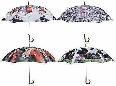 Large Umbrella with Farm Animals on.  Pig, Cow, Chicken or Horse. 120cm diameter