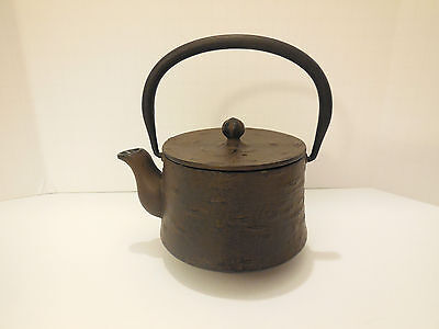 Japanese Cast Iron Teapot Cherry Tree Bark Pattern, Sakurazundo Tetsubin, Small
