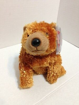 Sequoia the Bear Ty Beanie Babies 2001 Plush Stuffed Animal Toy New with Tags